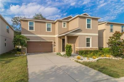 Brandon FL Single Family Home For Sale: $329,900