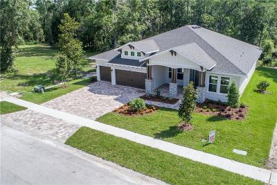 Land O Lakes, Land O Single Family Home For Sale: 4006 Cove Lake Place