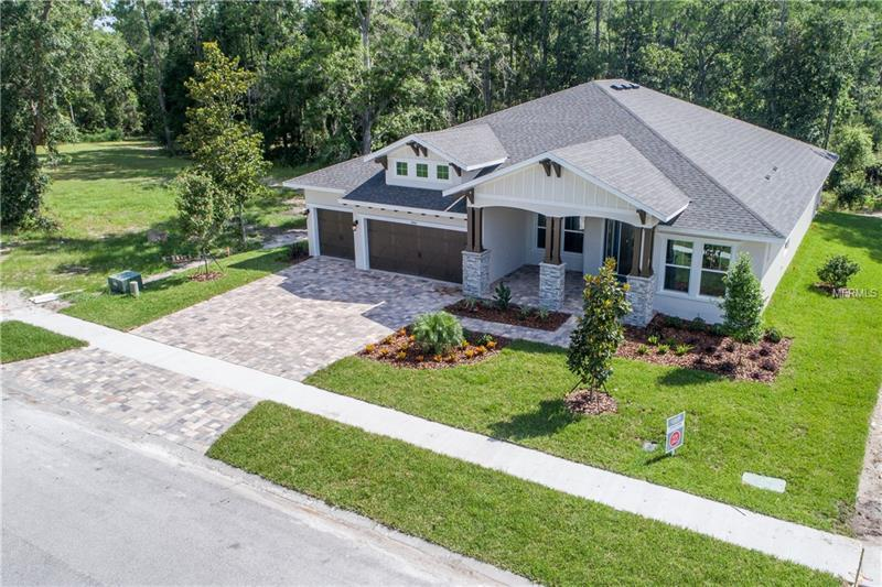 4006 Cove Lake Place Land O Lakes, FL  | MLS# T3109533 | Best Hassle