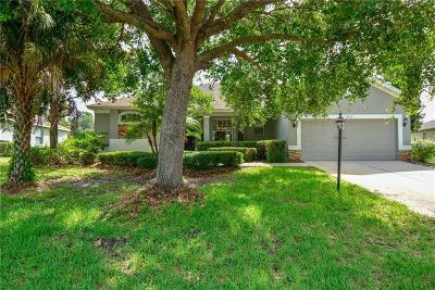 Plant City Single Family Home For Sale: 2934 Spring Hammock Drive