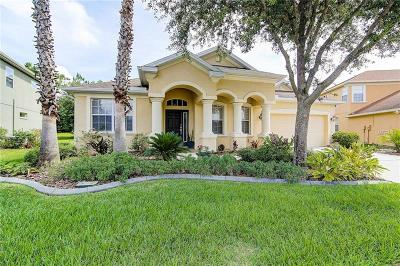 Wesley Chapel Single Family Home For Sale: 27435 Silver Thatch Drive