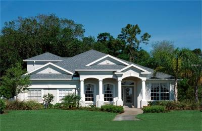 Wesley Chapel Single Family Home For Sale: 6131 Bridleford Drive