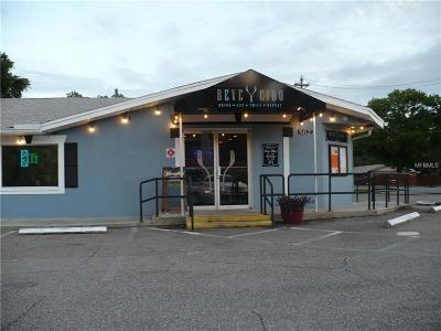 Lithia Commercial For Sale