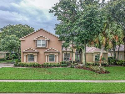 Lithia Single Family Home For Sale: 6232 Kingbird Manor Drive