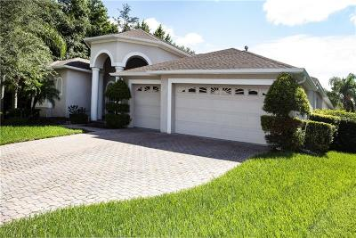Tampa Single Family Home For Sale: 16305 Dobson Court