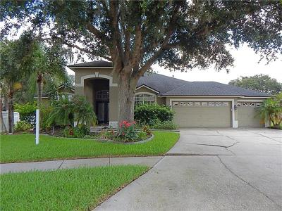 Tampa Single Family Home For Sale: 10022 Oxford Chapel Drive