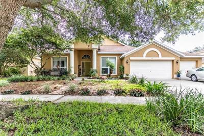 Valrico Single Family Home For Sale: 1119 Split Silk Street