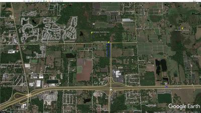 Plant City Residential Lots & Land For Sale: 0 N Park Road