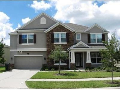Hernando County, Hillsborough County, Pasco County, Pinellas County Rental For Rent: 20010 Painting Nature Lane