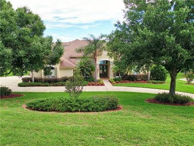 Single Family Home For Sale: 12641 Tradition Drive