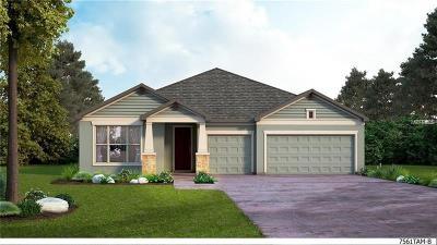 Single Family Home For Sale: 4919 Lakeshore Oaks Court
