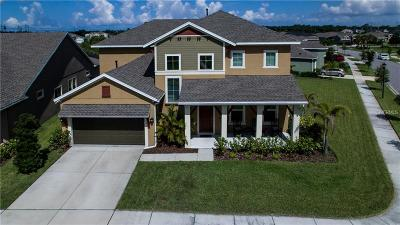 Apollo Beach Single Family Home For Sale: 6330 Havensport Drive