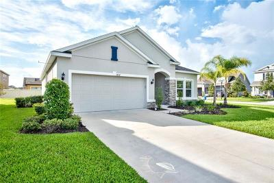Wesley Chapel Single Family Home For Sale: 1804 Odiorne Point Lane