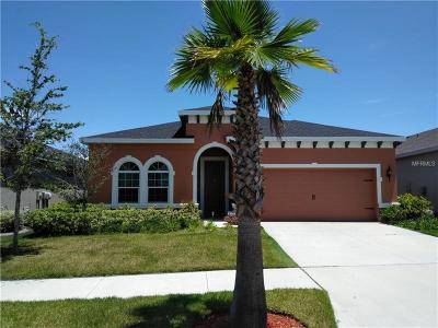 Riverveiw, Riverview, Riverview/tampa Single Family Home For Sale: 11226 Spring Point Circle