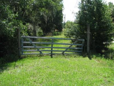 Plant City Residential Lots & Land For Sale: 6422 N Dormany Road