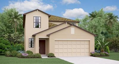 Wimauma, Wimauma` Single Family Home For Sale: 14721 Crescent Rock Drive
