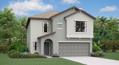 Wimauma, Wimauma` Single Family Home For Sale: 14723 Crescent Rock Drive