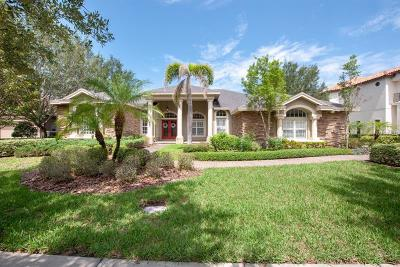 Palm Harbor Single Family Home For Sale: 1377 Playmoor Drive