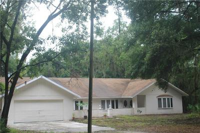 Lithia Single Family Home For Sale: 2517 Nichols Road