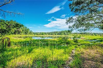 Residential Lots & Land For Sale: 12955 Bellamy Brothers Boulevard
