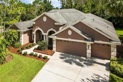 Wesley Chapel Single Family Home For Sale: 27345 Water Ash Drive