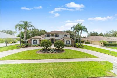 Hernando County, Hillsborough County, Pasco County, Pinellas County Single Family Home For Sale: 19111 Beckett Drive