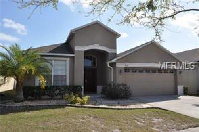 Riverview FL Single Family Home For Sale: $239,000