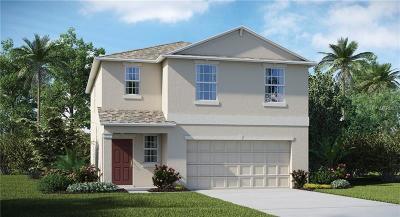 Wimauma Single Family Home For Sale: 4904 Wild Coffee Avenue