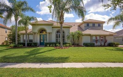Orlando Single Family Home For Sale: 10536 Wittenberg Way