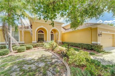 Hernando County, Hillsborough County, Pasco County, Pinellas County Single Family Home For Sale: 5921 Jefferson Park Drive
