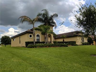 Hillsborough County Single Family Home For Sale: 9722 Sorbonne Loop