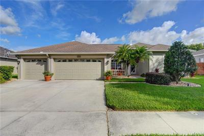 Hillsborough County Single Family Home For Sale: 9228 Estate Cove Circle