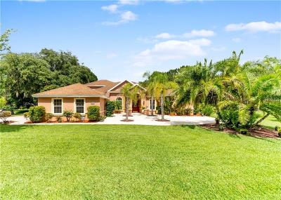 Hernando County, Hillsborough County, Pasco County, Pinellas County Single Family Home For Sale: 18517 Hannah Michaela Lane