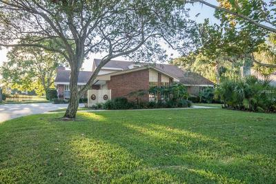 Tampa Single Family Home For Sale: 4101 Carrollwood Village Drive