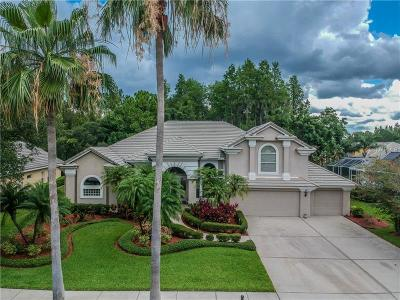 Tampa Single Family Home For Sale: 12103 Marblehead Drive