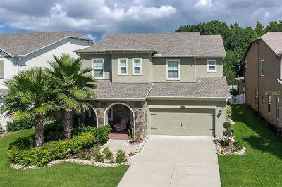 Wesley Chapel FL Single Family Home For Sale: $570,000