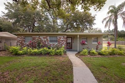 Tampa Single Family Home For Sale: 6816 S Shamrock Road