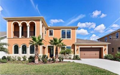 Hernando County, Hillsborough County, Pasco County, Pinellas County Single Family Home For Sale: 32216 Wenlock Loop