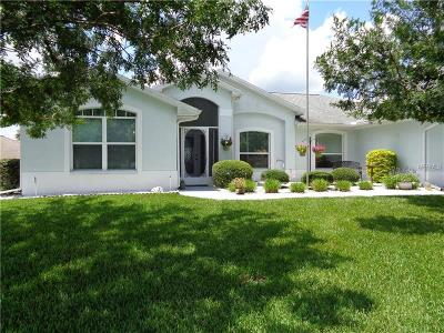 Hernando County, Hillsborough County, Pasco County, Pinellas County Single Family Home For Sale: 29204 Golf Cart Way