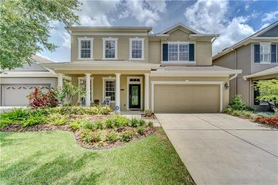 Hernando County, Hillsborough County, Pasco County, Pinellas County Single Family Home For Sale: 6413 Sea Lavender Lane