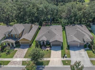 Lithia Single Family Home For Sale: 16007 Courtside View Drive