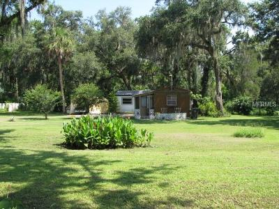 Plant City Single Family Home For Sale: 8006 Turkey Creek Road