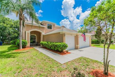 Riverview Single Family Home For Sale: 10904 Summerton Drive
