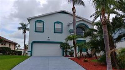 New Port Richey Single Family Home For Sale: 6351 Fjord Way