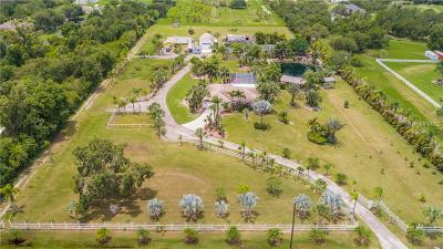 Port Charlotte Single Family Home For Sale: 24645 Nova Lane