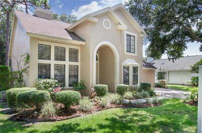 Tampa Single Family Home For Sale: 6312 Chauncy Street