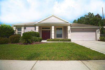 Wesley Chapel Single Family Home For Sale: 5430 Riva Ridge Drive