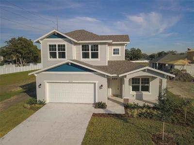 Tampa Single Family Home For Sale: 3317 Glen Meadow Court