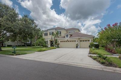 Tampa Single Family Home For Sale: 2202 Climbing Ivy Drive
