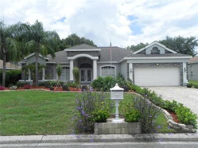 Plant City Single Family Home For Sale: 3306 Kilmer Drive